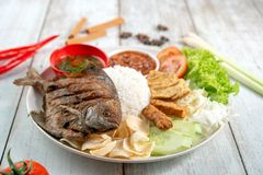 Fried pomfret fish and rice royalty free stock photography