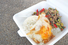Fried pork with basil leaves, in foam box Stock Photo