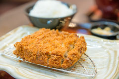 Fried Pork Cutlet serve with rice in dish at Japanese restuarant Stock Photography