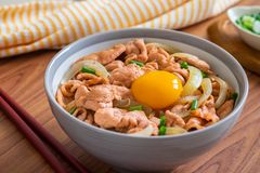 Fried pork with egg and rice in bowl. Japanese food, Donburi stock images