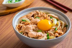 Fried pork with egg and rice in bowl. Japanese food, Donburi stock photos