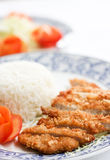 Fried pork. With flour in deep fried Stock Images