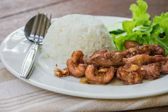 Fried pork with garlic and rice, Thai food Stock Images