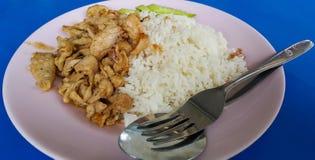 Fried pork with garlic. Thai styke vegetable rice Royalty Free Stock Image