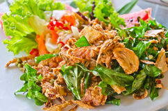 Fried pork with herb Royalty Free Stock Photography