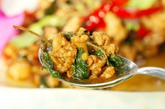 Fried pork with Holy Basil Stock Photography
