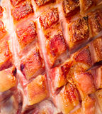 Fried pork leg Stock Photos