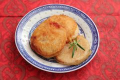 Fried pork meat. Some fried pork meat with a panade of bread Stock Images
