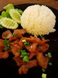 Fried Pork med ris Arkivbild