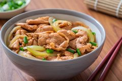 Fried pork with rice in bowl. Japanese food style, Donburi stock image