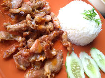 Fried Pork with Rice Stock Photos
