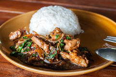 Fried pork with rice Stock Photography