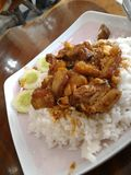 Fried pork with rice Royalty Free Stock Photography