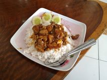 Fried pork with rice Stock Image