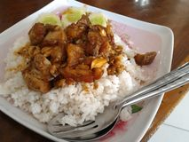 Fried pork with rice Royalty Free Stock Photo
