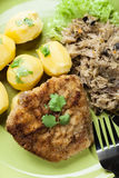 Fried pork schnitzel served with boiled potatoes and fried sauer Royalty Free Stock Photos