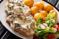 Fried pork steak in a creamy mushroom sauce with new potatoes and fresh vegetable salad close-up on a plate. horizontal stock photos