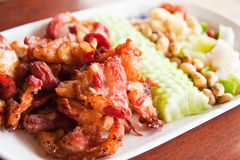 Fried pork with Thai herbal Royalty Free Stock Photo