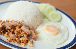Fried Pork With Garlic On Rice And Fried Egg Royalty Free Stock Photography