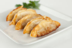 Fried Pot stickers, Dumplings royalty free stock photography