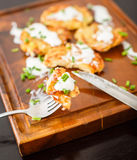 Fried potato pancakes with sour cream and green onions Stock Photography