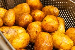 Fried potatoes. Potatoes fried in oil to eat Stock Photography