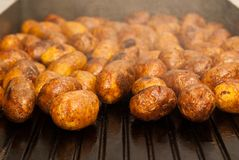Fried potatoes. Potatoes fried on the grill Stock Images