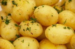 Fried potatoes. Served on a plate Royalty Free Stock Photo