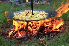 Fried potatoes on barbecue Stock Photography