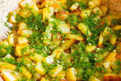 Fried potatoes in a frying pan close up. Kortofel fried in a frying pan and sprinkled with dill and garlic Stock Photography
