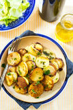Fried potatoes with goose duck grease and parsley Royalty Free Stock Photography