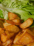 Fried potatoes and green salad. Stock Images
