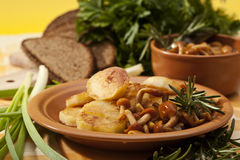 Fried potatoes with mushrooms Royalty Free Stock Photos