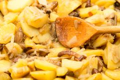 Fried potatoes with mushrooms. Photos in the studio Stock Photos