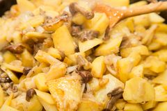 Fried potatoes with mushrooms. Photos in the studio Royalty Free Stock Photos