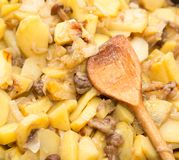 Fried potatoes with mushrooms. Photos in the studio Stock Photo