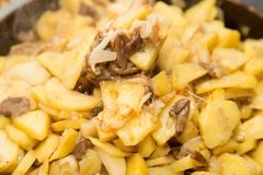 Fried potatoes with mushrooms. Photo of abstract background Royalty Free Stock Photos