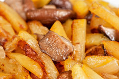 Fried potatoes with mushrooms Stock Photography