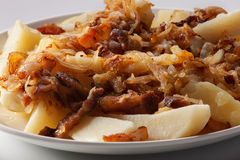 Fried potatoes with onion and bacon. Fried potatoes with onions and bacon on a plate close-up Royalty Free Stock Image