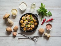 Fried potatoes with penny bun on a cast iron pan. Rustic cusine. Fried potatoes with penny bun on a cast iron pan. Rustic cusine stock image