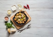 Fried potatoes with penny bun on a cast iron pan. Rustic cusine. Fried potatoes with penny bun on a cast iron pan. Rustic cusine stock photography