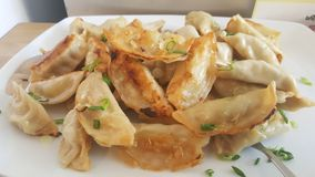 Fried Potstickers On White Plate Arkivbild