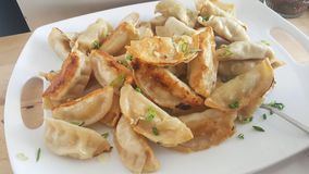 Fried Potstickers On White Plate Arkivfoton