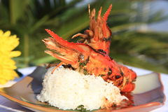 Fried prawn. At a beach resort Stock Images