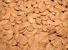 Fried Pumpkin Seeds photographie stock