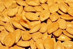 Fried Pumpkin Seeds image stock