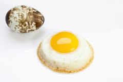 Fried quail egg, close-up Royalty Free Stock Images