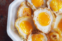 Fried quail egg Stock Photography