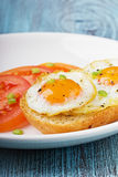 Fried quail eggs with a toast and tomatoes strewed with fresh green onions. In a white plate on a wooden turquoise surface Royalty Free Stock Image