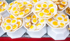 Fried Quails egg. Stock Photography